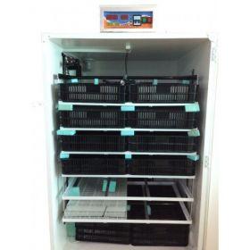 Incubator IP-6-semiprofesional computerizat capacitate mare frigider microcontroller