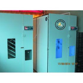 Incubator IP-8D-semiprofesional computerizat capacitate mare frigider microcontroller