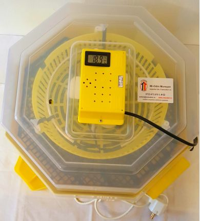 2-1-6-Clocitoare-Cleo-5TPHAC-full-automat-performant-termohigrometru-oua-prepelita-cupa-apa-puisor-01A