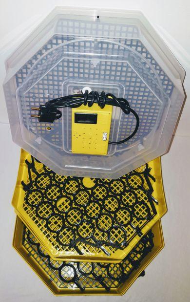 Incubator Cleo 5 cu etaj, termometru digital şi întoarcere semi-automată ouă de găină & prepeliţă